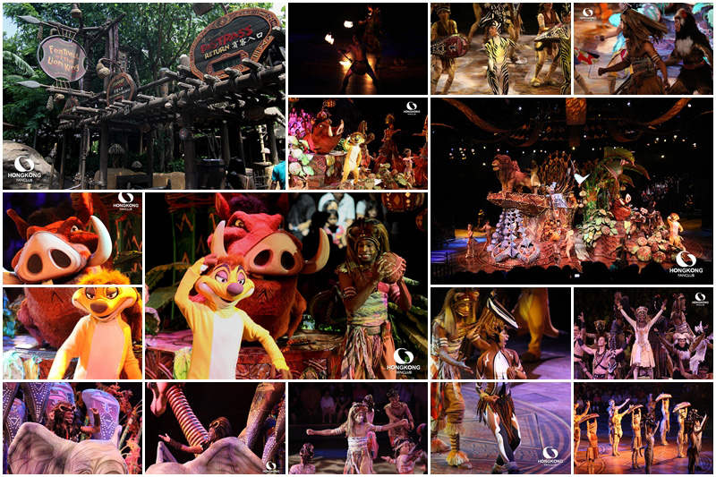 Festival of the Lion King : หนึ่งในการแสดงตระการตา ที่ไม่ควรพลาด