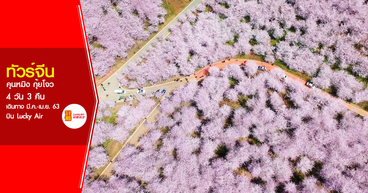 ทัวร์จีน คุนหมิง กุ้ยโจว 4 วัน 3 คืน (มี.ค.-เม.ย. 63)